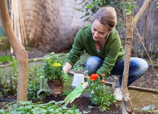 weight loss gardening