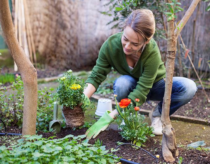 weight loss gardening